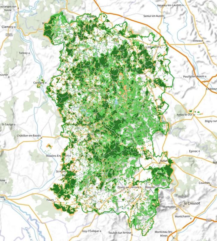 Ancienneté des forêts du Parc naturel régional du Morvan