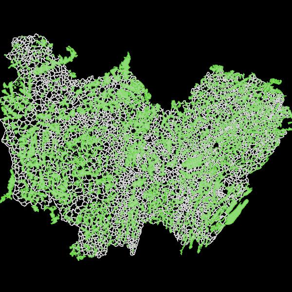 Forêts de Cassini en Bourgogne-Franche-Comté