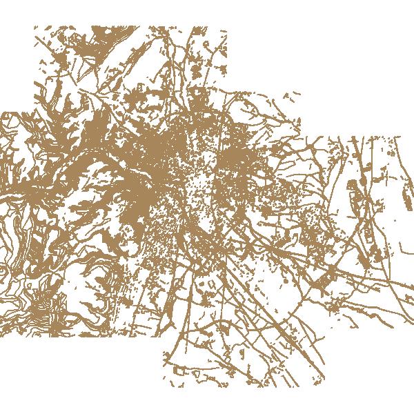 Modèle numérique de terrain (MNT lignes) de Dijon 2013